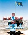 Правовое регулирование государственного геологического  изучения недр в Казахстане