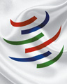 How to live with the WTO